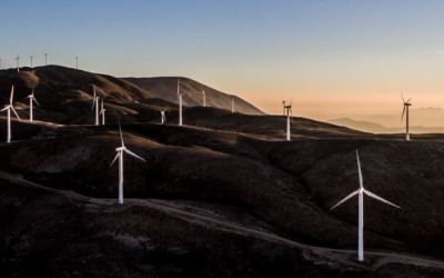 Google uses its .brand to commit to going green